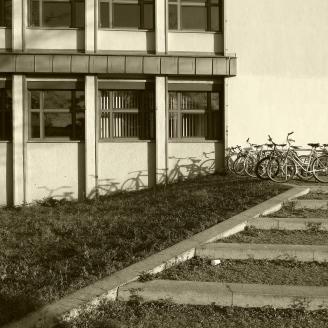 Bike Races (© notmsparker)
