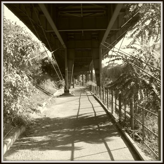 A great place for walking - along the Landwehrkanal towards Möckernbrücke
