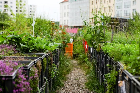 Prinzessinnengarten (photo: stilinberlin)