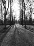 Long Shadows (one of the gates to Tiergarten)
