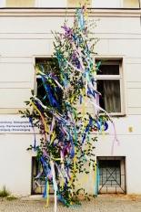 Maibaum - May tree in the best Rheinlandische Tradition.