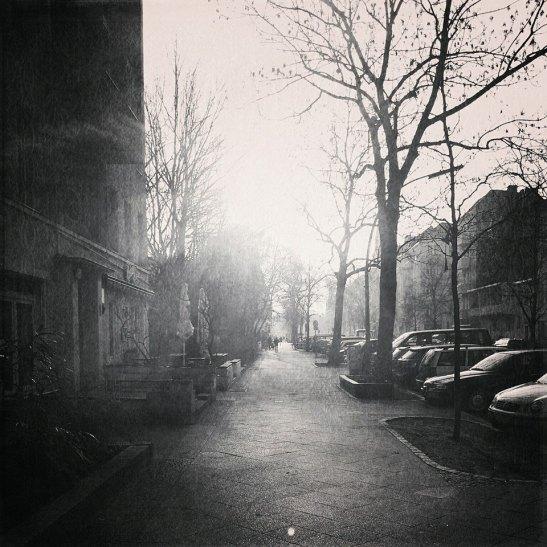 February Sun in Körtestrasse (© notmsparker)