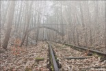 "The disused Leichenbahn tracks (image by Patrick Hertel through Forum ""Hidden Places"" and http://www.patrick-hertel.de/)"